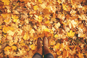 Conceptual legs in boots on the autumn leaves. Feet shoes walkin