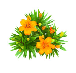 lily flowers bouquet isolated