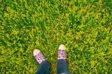 vivid background sneakers on grass