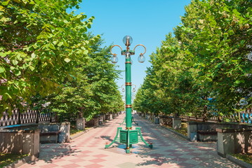 Park with green trees and a lantern in Minsk