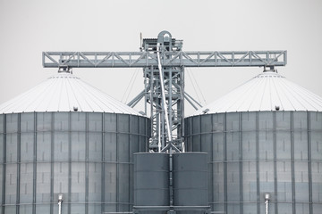 Storage grain silos in winter