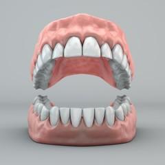 Bocca denti e gengive