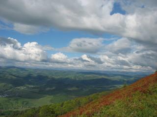 Склоны Карпатских гор, покрытые рыжими полянами черники