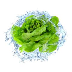 Gemüse 301