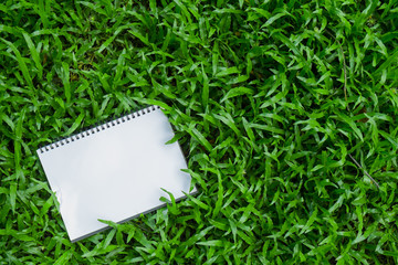 Hand holding a note pad on green grass