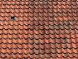 Wellenförmige Dachziegel auf einem Wohnhaus in Oerlinghausen