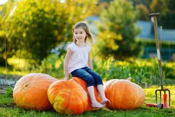 Cute little girl sitting on huge pumpkins