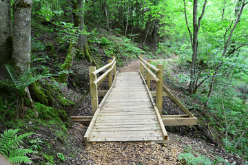 Wooden bridge in the forest. Sigulda.