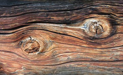 verwittertes Holz - weathered wood