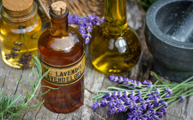 Verarbeitung von frischem Lavendel