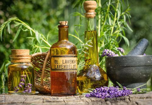 Foto op Canvas Aromatische Lavendel - Verarbeitung im Garten