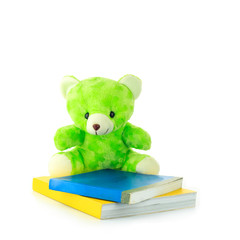 Colorful bear and book