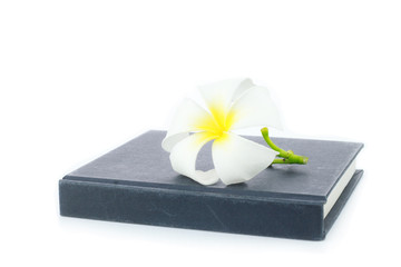 Plumeria and notebook