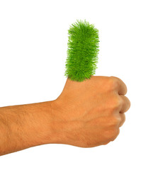 Green Grass  Thumb Go Green thumbs up Hand