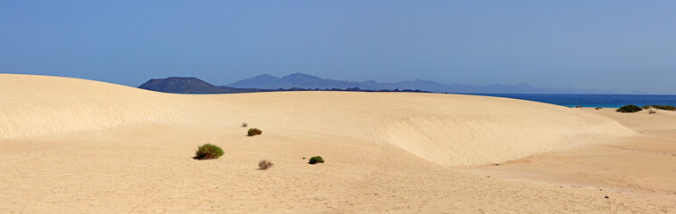 dunes de sable des îles canaries