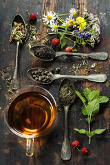 Black, green and herbal tea © Natalia Klenova