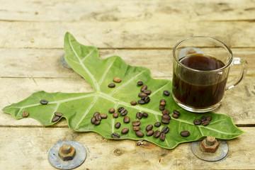 Nontoxic black coffee and coffee bean on elephant ear leaf