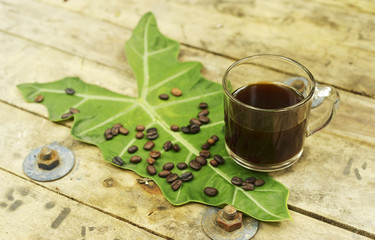 Nontoxic black coffee and coffee bean on elephant ear leaf