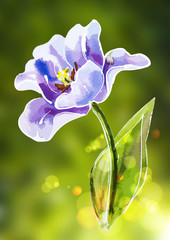 Purple tulip, watercolor painting.