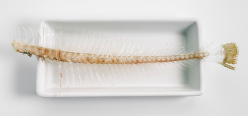 fishbone on tray isolated on white