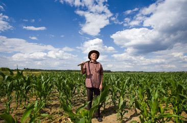 Old man in corn field