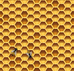 Honeycomb and bees seamless vector background