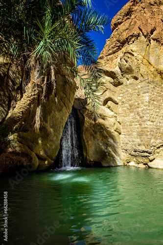 Fotobehang Tunesië Waterfall Chebika Tunisia