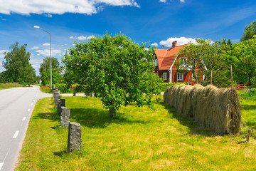Summer colors of Swedish village