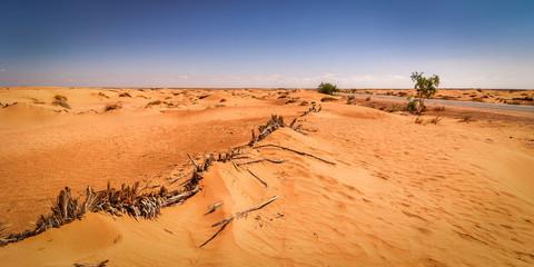 Desert Tunisia