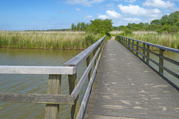 Wooden footbridge over a river in spring