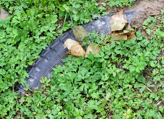 black tyre submerged by green vegetation 1