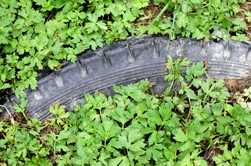 old pollutant black tyre submerged by green vegetation