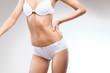 Woman Body. Perfect female in underwear