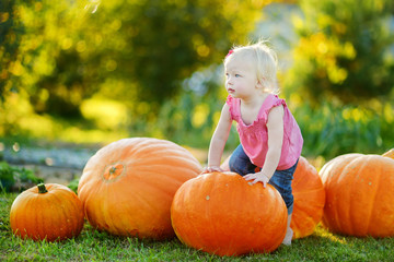 Cute little girl and huge pumpkins