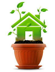 Growing house symbol like plant with leaves in flower pot