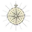 vintage compass rose - 66298298
