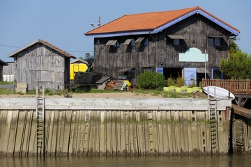Oyster farm in France