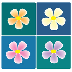 vector colorful flowers set on the colorful background