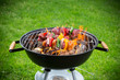 Tasty skewers on garden grill, close-up. - 66301679