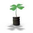 luck in business, abstract money concept with four-leaf clover