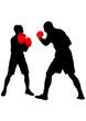 Постер, плакат: Boxers