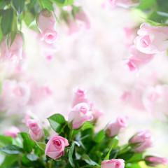 Hintergrund Rosen