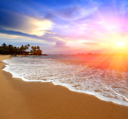 sunshine over sea shore