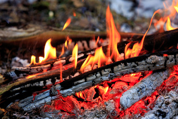 hot flame of campfire
