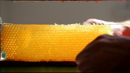 male hands cut off a piece of honey comb with wire
