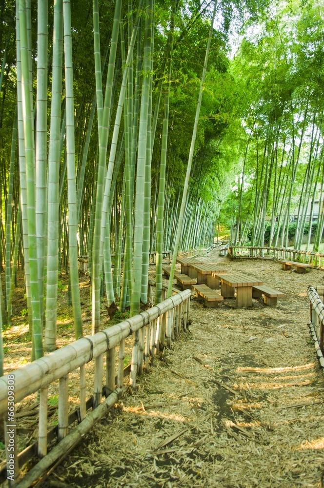 bambus ława przerwa - powiększenie