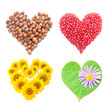 Collage of heart-shaped things isolated on white background