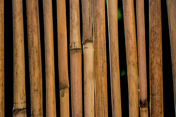curtain for privacy, camping, hiking, trips, bamboo