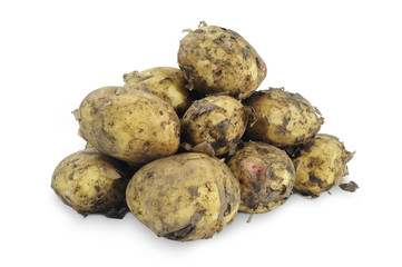 Young potatoes on white background