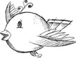 Cute Doodle Sketch Bird Vector Illustration Art